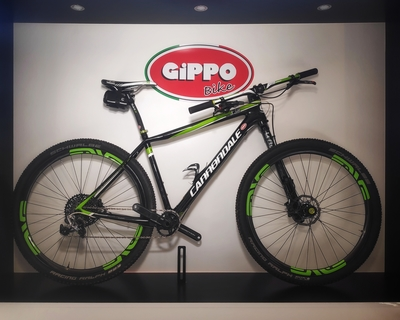 "Cannondale FSI Team Factory Racing 29"" - L"